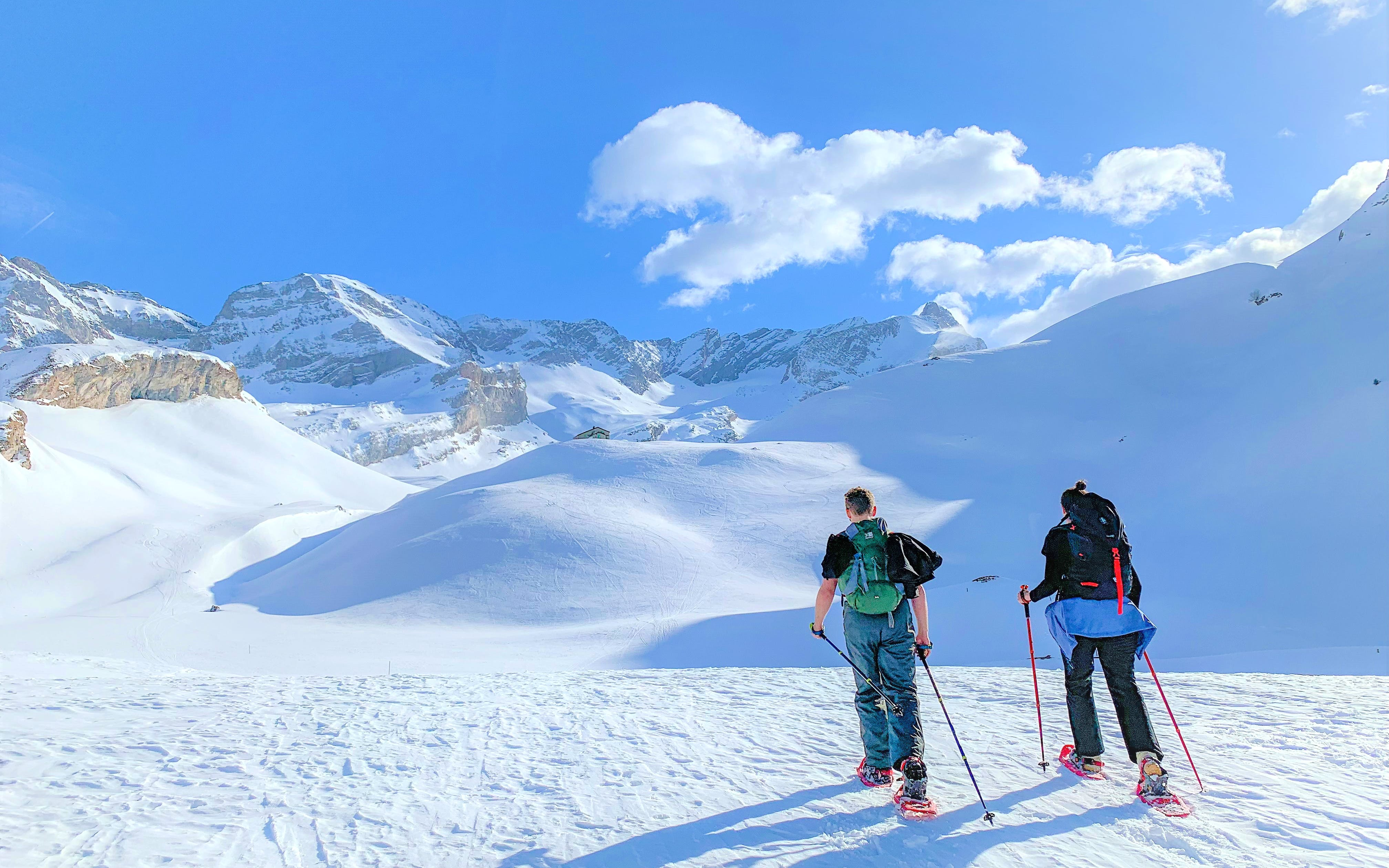 Snowshoeing in the Swiss Alps